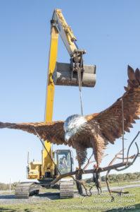 Seaman Eagle Sculpture installation Montezuma